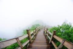 Chemin en bois dans la forêt Images libres de droits