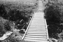 Chemin en bois de promenade Photographie stock libre de droits