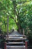 Chemin en bois de promenade au-dessus de rivière Photo libre de droits