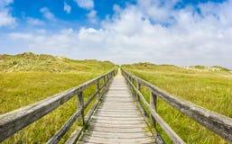Chemin en bois idyllique dans le paysage dunaire de plage de mer européenne de nort Images libres de droits