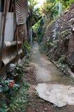 Chemin en bois, manière, voie des planches dans Forest Park, fond d'image de perspective image stock