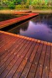 Chemin en bois sur le lac   Images libres de droits