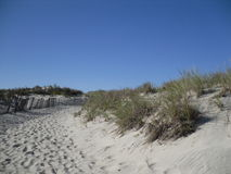 Chemin en dunes de sable sur le Long Island Photographie stock libre de droits