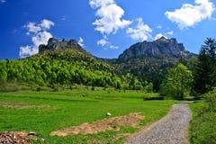 Chemin en montagnes Photo libre de droits