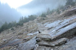 Chemin en montagnes Photos libres de droits