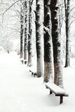 Chemin en neige-stationnement Image libre de droits