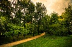 Chemin en parc Image stock