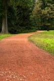 Chemin en parc Photographie stock