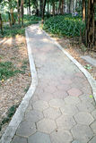 Chemin en pierre Photos stock