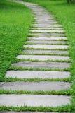 Chemin en pierre avec l'herbe verte images stock