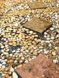 Chemin en pierre dans le jardin Images stock