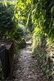 Chemin en pierre dans les montagnes Photo stock