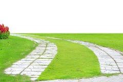 Chemin en pierre de jardin avec l'herbe grandissant entre les pierres, Photographie stock libre de droits