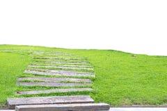 Chemin en pierre de jardin avec l'herbe grandissant entre les pierres, Photos stock