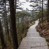 Chemin en pierre de montagne Image libre de droits