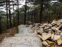 Chemin en pierre de montagne Photographie stock