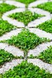 Chemin en pierre de promenade de bloc en parc avec l'herbe verte Photo stock