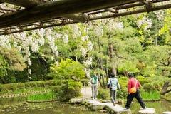 Chemin en pierre de zen dans un pone près de tombeau de Heian Photographie stock