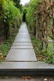 Chemin en pierre humide de jardin Photos stock