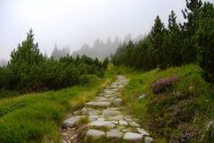 Chemin en pierre en montagnes de Tatra photo libre de droits
