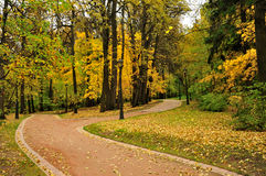Chemin en stationnement d'automne Photographie stock