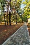 Chemin en stationnement d'automne Photo stock