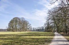 Chemin entre la forêt et les champs Image stock
