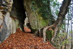 Chemin entre les roches Image libre de droits