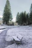 Chemin et banc congelés Images stock