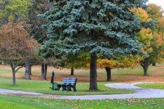 Chemin et banc de chariot de golf en automne Photo stock