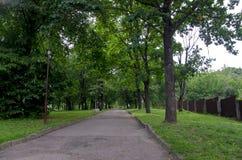 Chemin et barbelure avec l'herbe verte en parc ensoleillé d'été vert photos libres de droits