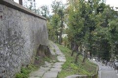 Chemin et escaliers de forteresse médiévale de Sighisoara, photographie stock