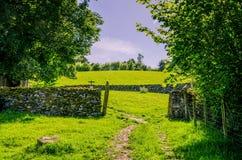 Chemin et mur de pierres sèches sur la terre de pâturage Photographie stock