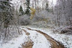 Chemin forestier, couvert de première neige Photographie stock libre de droits
