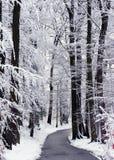 Chemin forestier de neige d'hiver photographie stock