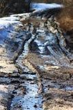 Chemin forestier de ressort Photos libres de droits