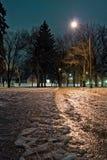 Chemin glacial au parc Image stock