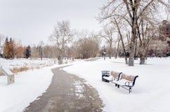 Chemin glacial d'enroulement un jour nuageux d'hiver photos stock
