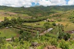 CHEMIN GRENIER, MAURICIO - 29 DE NOVIEMBRE DE 2015: Parque en DES Couleurs de Vallee en Mauricio Parque nacional Imagen de archivo libre de regalías