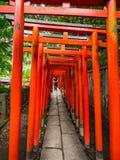 Chemin impressionnant couvert par les portes rouges au tombeau de Nezu Jinja à Tokyo - à TOKYO, JAPON - 17 juin 2018 Image libre de droits