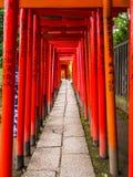 Chemin impressionnant couvert par les portes rouges au tombeau de Nezu Jinja à Tokyo - à TOKYO, JAPON - 17 juin 2018 Photos stock