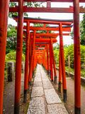 Chemin impressionnant couvert par les portes rouges au tombeau de Nezu Jinja à Tokyo - à TOKYO, JAPON - 17 juin 2018 Images libres de droits