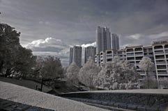 Chemin infrarouge de promenade de photo, plat photos libres de droits