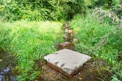 Chemin inondé pendant l'été Le concept des obstacles quotidiens Image stock