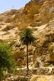 Chemin jusqu'au dessus, désert de Judean Photographie stock libre de droits