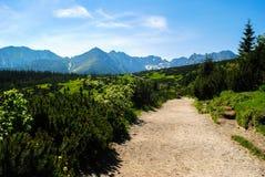 Chemin menant à Czarny Staw Gasienicowy Images stock
