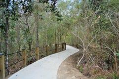 Chemin menant dans la forêt Photographie stock libre de droits