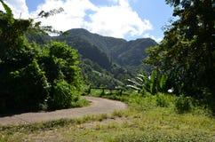 Chemin montagneux, Sainte-Lucie, Lesser Antilles, mer des Caraïbes photos libres de droits