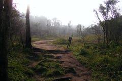 Chemin mystérieux Image stock