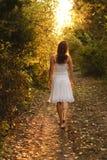 Chemin mystérieux Image libre de droits